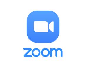 Corsi Zoom attivi